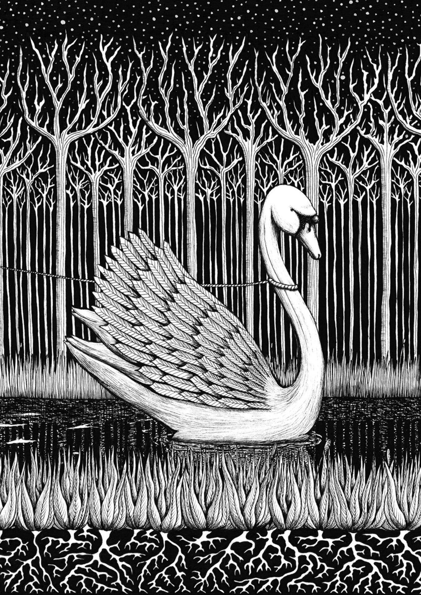 2 Big Swan