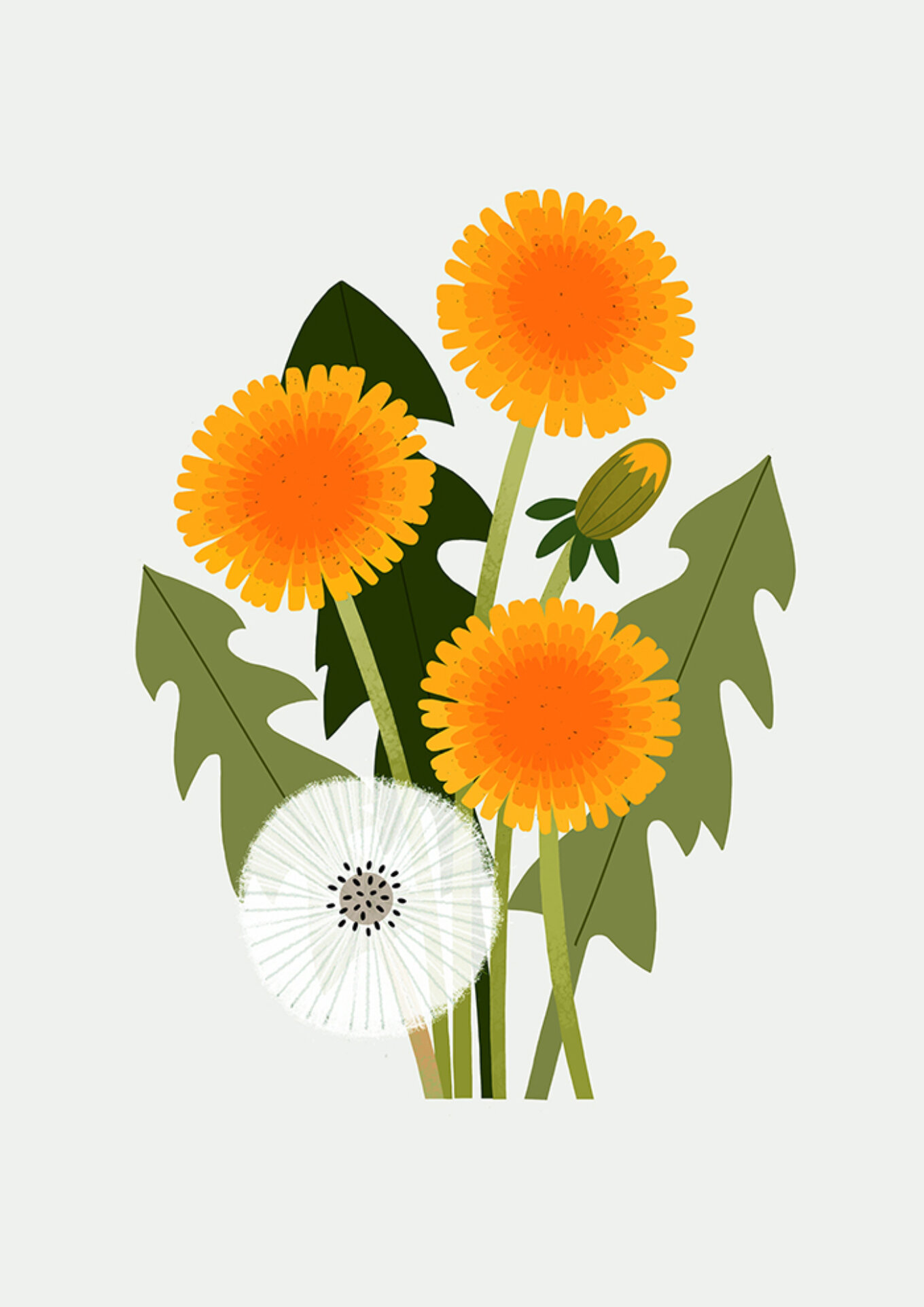 Dandelions final lowres copy