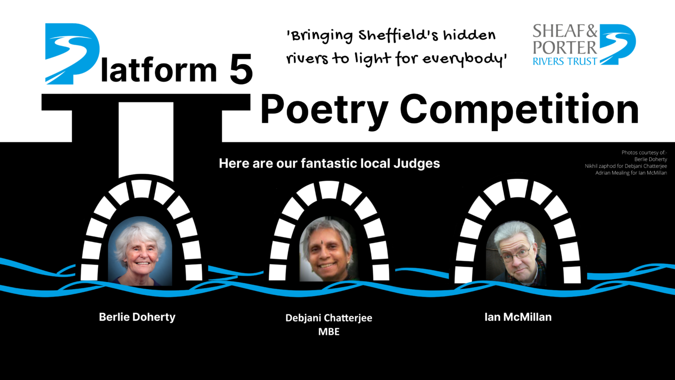 FINAL Platform 5 Poetry Competition for Twitter