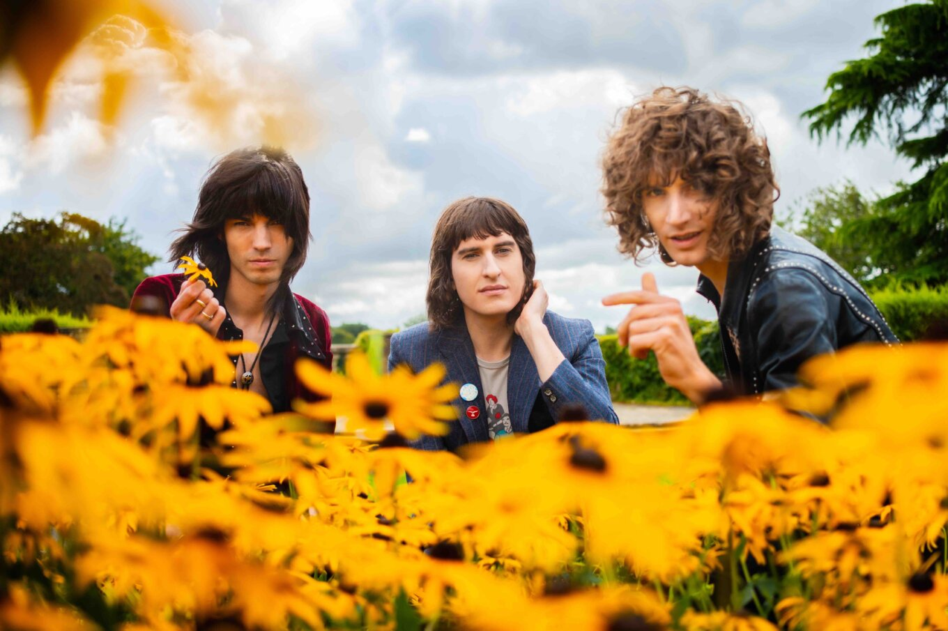 Temples band sunflowers