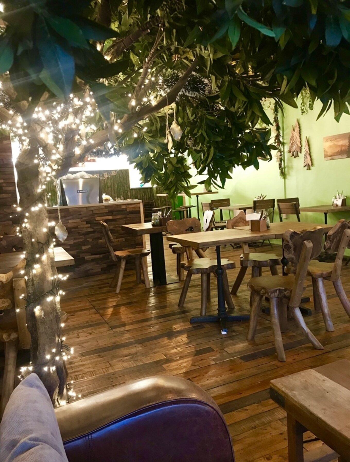 Wildwood Sheffield Coffee Shop