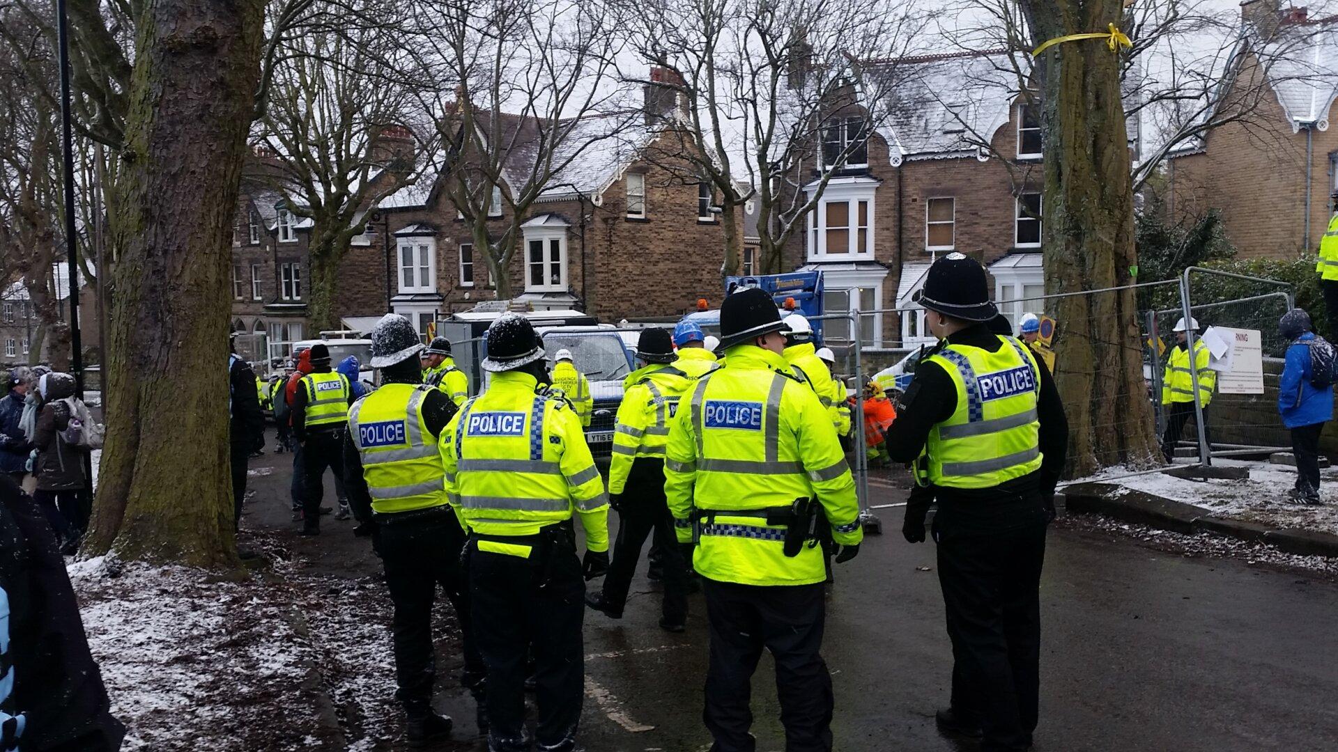 Street tree police