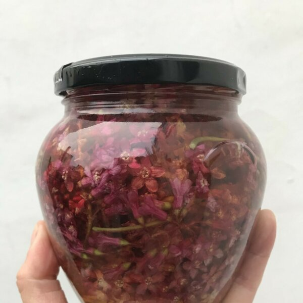 Social Pickle's Quick Guide to Pickling