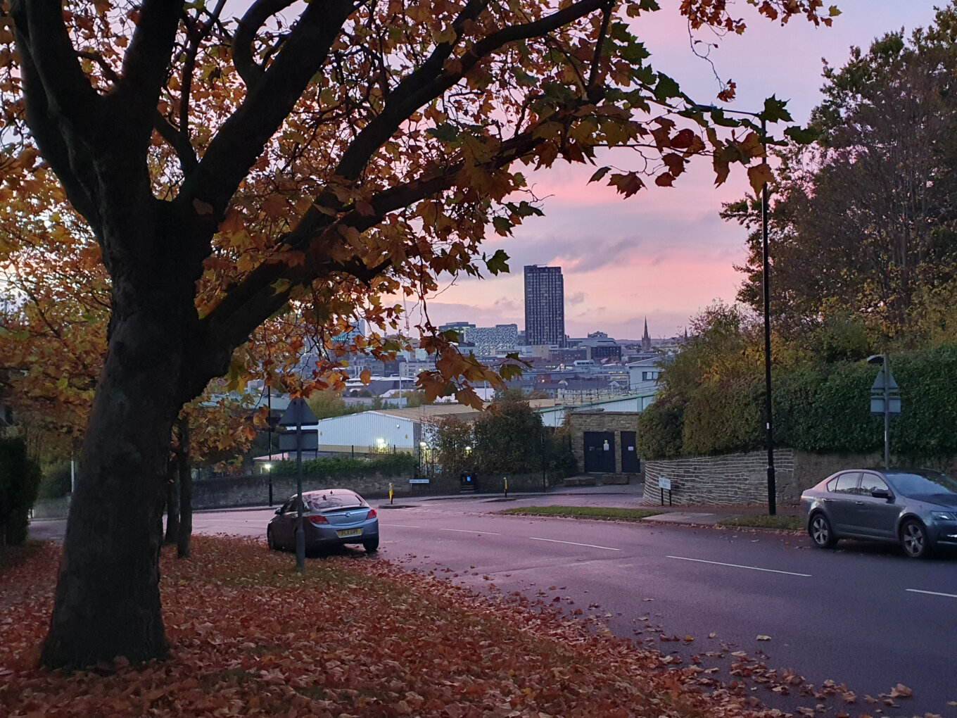 Sheffield city centre from Park Grange Road