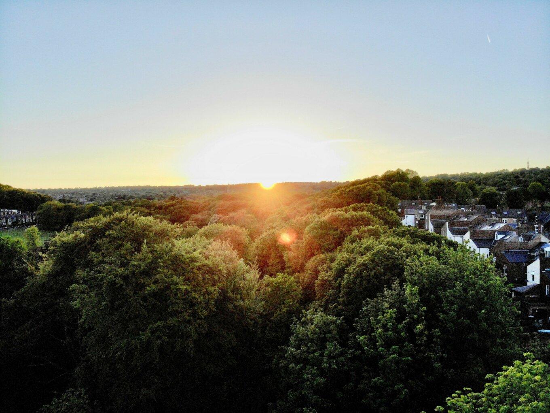 Sheffield skyline green trees